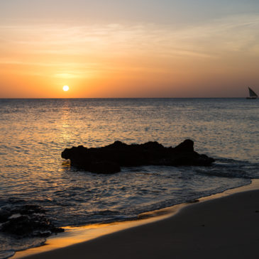 Paradis på Zanzibar