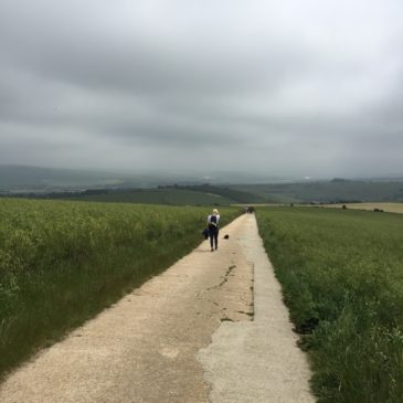 Lewes to Saltdean