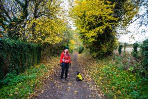 Hike November 2016