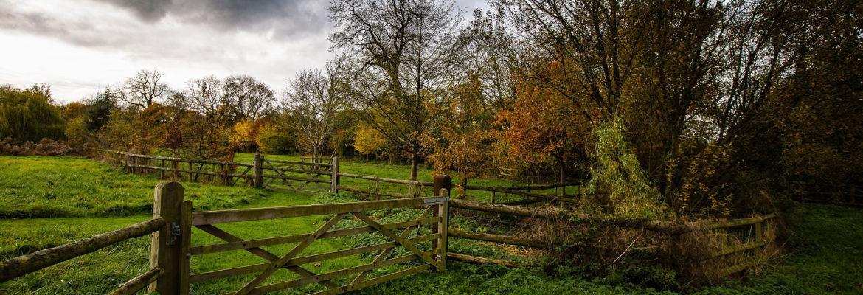 Princes Risborough to Wendover Hike