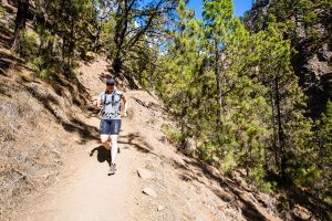 Trailrunning down the mountain